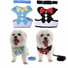 Adjustable Soft Harness Collar Strap Lead Leash Vest Small Pet Dog Puppy Cat HOT