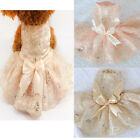 Pet Dog Tutu Cat Puppy Skirt Princess Clothes Cos Lace Design Wedding Dress