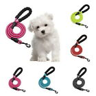 Strong Dog Leash with Comfortable Padded Handle and Highly Reflective Threads