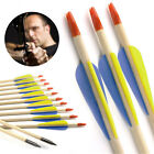 12pcs Archery Hunting Training Recurve Bow Wooden Shaft Arrows 20-70lbs Spine