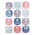 Funny 1-12 Months Baby Monthly Milestone Sticker Baby Shower Photo Props