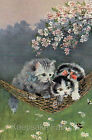 Cats & Cherry Blossoms Reproduction Quilt Block FrEE ShiPPinG WoRld WiDE