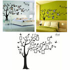 3D DIY Photo Tree Bird Adhesive Wall Decal Family Sticker Mural Art Home Decor