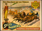 Photo Printed Old Poster Sells Brothers Enormous United Show 084