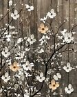 Rustic Brown White Wall Art, Brown White Flowers On Tree Branch Wall Art Picture