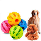 Dog Ball Chew Pet Puppy Teething Treat Clean Bite Durable Training Toy