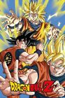 DBZ Poster Goku Dragon Ball Z 61x91.5cm