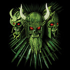 Viking Skulls Size Youth Small to 6 X Large T Shirt Pick Your Size image
