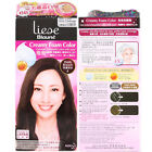 (best before 07.20) Kao Japan Blaune Creamy Foam Hair Color Kit cover gray hairs