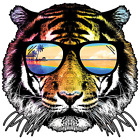 Summer Tiger Size Youth Small-6 X Large T Shirt Pick  Size image
