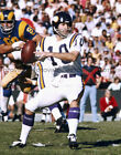 FRAN TARKENTON Photo Picture MINNESOTA VIKINGS Football Print 8x10 or 11x14 (#5) $4.95 USD on eBay