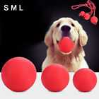 AM_ SN_ Hot Solid Training Toy Rubber Ball Pet Puppy Dog Chew Play Fetch Bite Ga