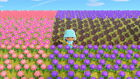 ANIMAL CROSSING NEW HORIZONS | FLOWERS & HYBRIDS | SLASHED PRICES & NEW PACKAGES