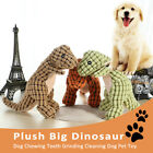 Supplies Grinding Tooth Cat Molars Toothbrush Bite Toy Dog Chew Toys Dinosaur