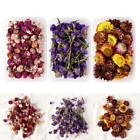 Art Jewellery Epoxy Resin Craft 1Box Real Dried Flowers Making Pendant Decor US