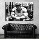EB027 Arnold Schwarzenegger Fitness Gym Exercise Motivation Poster and Canvas