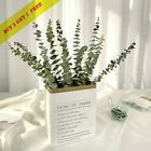 10pcs Natural Dried Flower Eucalyptus Branches Leaves Bouquet Home Decor-