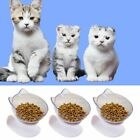 Double Bowl Cat Feeder Raised Cat Food Water Bowls