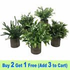 Long Lasting Green Plants Artificial Potted Home Office Decor Flowers With Pot