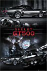 Poster Ford Shelby - GT500