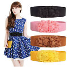 8 Color Women's Lady Double Rose Flower Buckle Elastic Waist Belt Lady Waistband