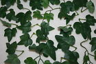 POISON IVY halloween artificial costume LEAVES sprigs dark green variegated