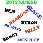 'B' Boys Name Iron On Transfer for T Shirts , Pillow Case ect personalised