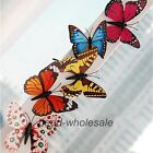 10pcs 3D Butterfly Fridge Magnets Room Car Wall Decorations Magnetic Crafts !!