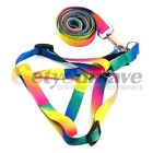 Hot Nylon Dog Harness with leash lead For Small Medium Dogs Harness Set