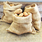 Jute Hessian Sacks 25kg 50kg Potato Storage Sacks Easy Carry Veg Storage Bags