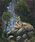 Poster / Leinwandbild Tiger waterfall - Chris Hiett