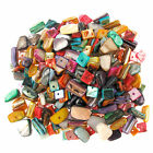 Mixed Dyed Shell Beads Square & Irregular Nugget Chips Bundle 240 Pieces APPROX