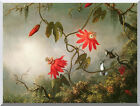 Stretched Canvas Art Print Passion Flowers and Hummingbirds Martin J Heade Repro