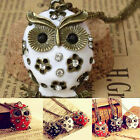 Women's Charms CHIC Crystal Rhinestone Owl Pendant long Necklace Sweater Chain