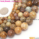 "Round Natural Agate Gemstone Jewelry Making Loose Bead 15"" 4/6/8/10/12/14mm Pick"