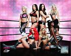 Bella Twins WWE Total Divas Posed Ring Photo (Select Size)