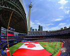 Rogers Centre Toronto Blue Jays MLB Licensed Fine Art Prints (Select Photo/Size)