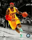 LeBron James Cleveland Cavaliers 2014 NBA Spotlight Action Photo (Select Size)