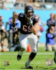 Jared Allen Chicago Bears 2014 NFL Action Photo (Select Size)
