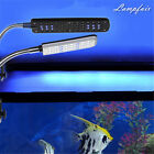 28&48 LED Aquarium Light For Fish Tank With Flexible Clip White And Blue Color