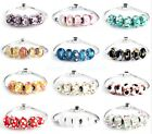 5x Lampwork Glass Charm Beads For Silver European Charm Bracelet