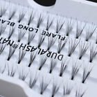 Individual False Fake 56 Stand Eyelashes Flare Cluster Party Lashes 8/10/12mm