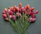 40 x Mixed Tone TULIPS Mulberry Paper Flowers Embellishments for Paper Crafts