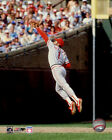 Ozzie Smith St. Louis Cardinals MLB Action Photo GY209 (Select Size)
