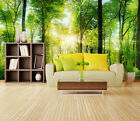 3D Forest sunlight 1 WallPaper Murals Wall Print Decal Wall Deco AJ WALLPAPER