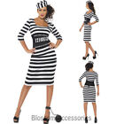 CL732 Ladies Classic Convict Jail Prisoner Jailbird Costume Hen Dress Up Outfit