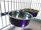 dog bowls for cages
