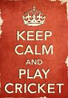 ACR3 Vintage Style Red Keep Calm Play Cricket Sport Funny Poster Print A2/A3/A4