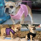 Pet Puppy Dog Mesh Soft Walking Collar Strap Vest Harness Apparel Size XS-XL