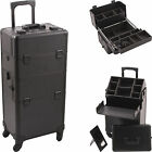 Внешний вид - New 2 in 1 Pro Aluminum Rolling Makeup Case Salon Cosmetic Organizer Trolley